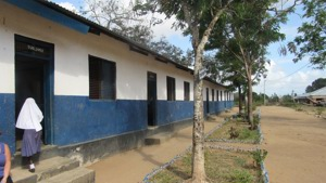 Mitengo Primary School